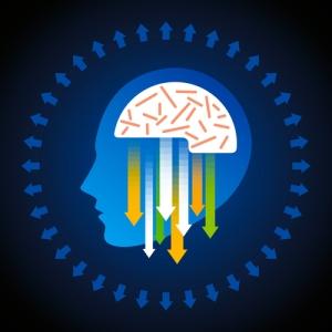 Enseña a tu sistema nervioso a enviar información a tus músculos.