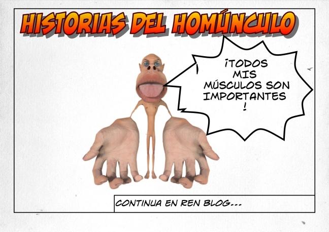 HOMUNCULO TODOS LOS MÚSCULOS SON IMPORTANTES REN ENTRENAMIENTO