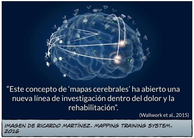 """""""Este concepto de mapas cerebrales ha abierto una nueva línea de investigación dentro del dolor y la rehabilitación"""""""