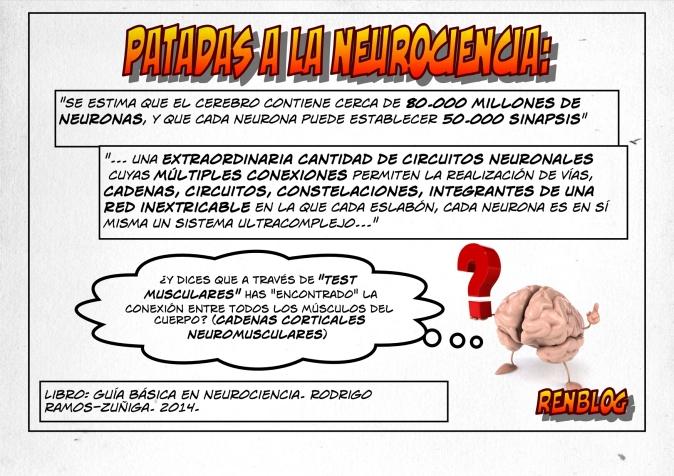 Patadas a la neurociencia