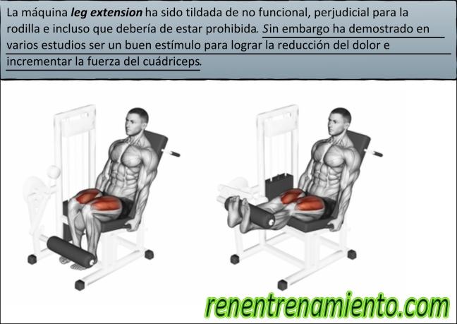leg extension funcional